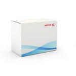 Xerox 497K08300 Síťové skenování / obsahuje skenování FTP / SMB / mailbox (497K08300)
