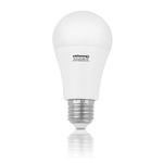 WHITENERGY LED žárovka SMD2835 A60 / E27 / 10W / bílá mléčná (10075)
