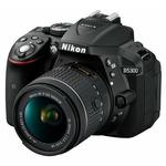 Nikon D5300 + AF-P 18-55 VR / 24.2 Mpix / CMOS / 3.2 LCD / černá (VBA370K007)