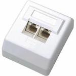 DATACOM Datová zásuvka UTP CAT6 2xRJ45 na omítku 45st. bílá (2455)