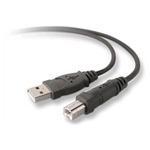 Belkin kabel USB A/B, 1,8m, Office Essentials bulk (F3U133b06)