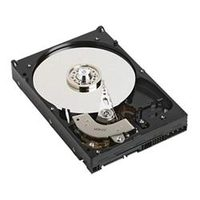 "DELL server 1TB / HDD / 3.5"" SATA / 7 200 rpm / 1y / pro PowerEdge R430 a T430"