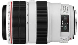 Canon EF 70-300mm f/4 - 5.6L IS USM
